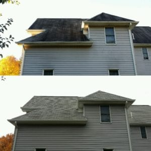 Softwash ranger park ridge nj roof cleaning