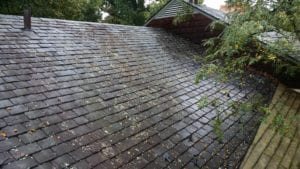 slate roof cleaning softwash ranger