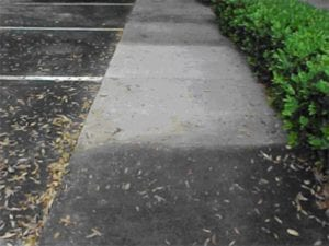 Pressure Washing Cedar Grove NJ