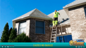 Soft Wash Roof Cleaning Cedar Grove NJ